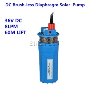 Diaphragm  water pump